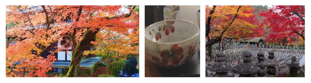 טיול מאורגן - סתיו - עם 'יפן חוויה אחרת - Explore Japan' קולאז' של תמונות אסתטיקה סתווית