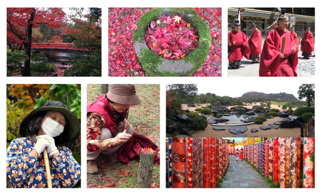 טיול מאורגן ליפן   יפן חוויה אחרת   Explore Japan  למטייל ביפן   סתיו ביפן