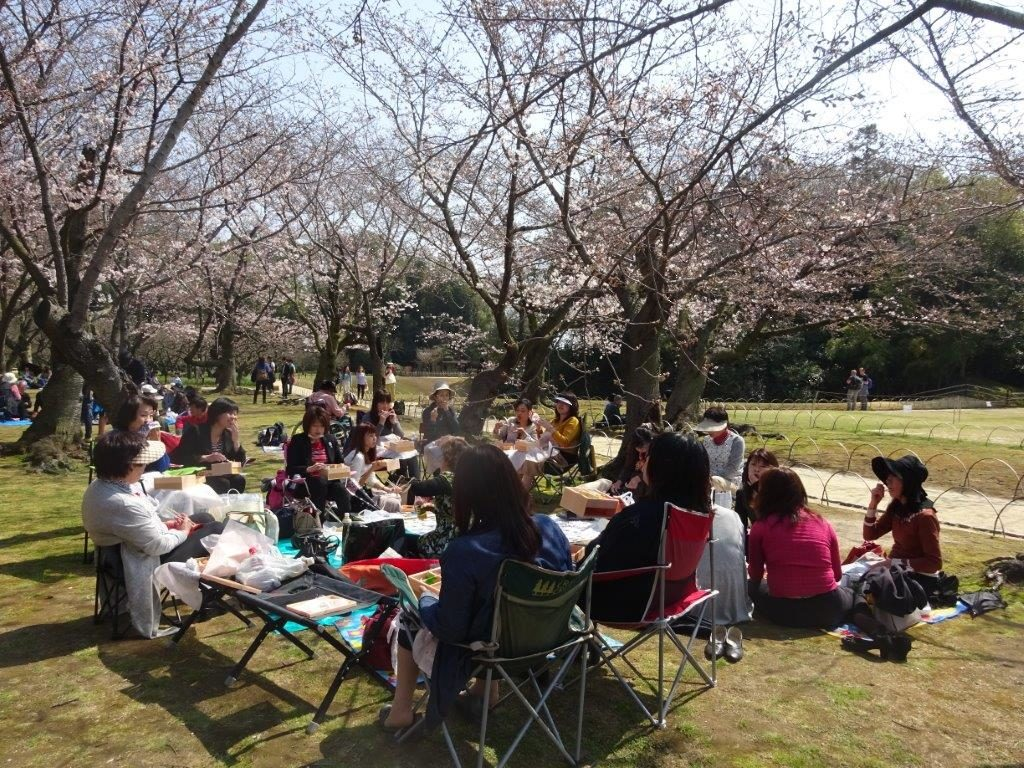 מאמר יפן - אביב בדגש חקלאות - רותי פוגאטש