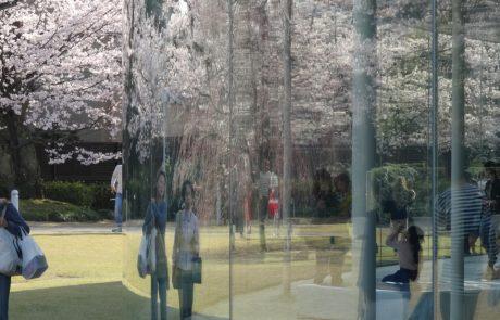 8.6.2020 | טבע ואדם ביפן: תרבות יפן כתבנית נוף הולדתה | אדר' אריה קוץ