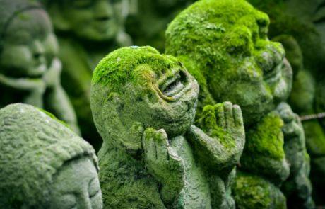 הרצאה: פולחן דת השינטו הקדומה וחגיגות פסטיבלי הקיץ ביפן – אילה דנון |  יום שלישי, 09.07.19, 10:30 | מוזיאון טיקוטין לאמנות יפנית