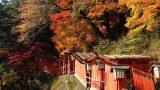 טיולי עומק סתווים | טיול ליפן | טיול מאורגן ליפן | יפן חוויה אחרת | Explore Japan